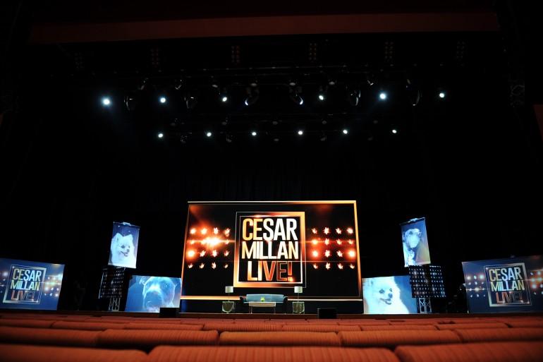 Cesar Millan Live in Kuala Lumpur 2015 Slide 7